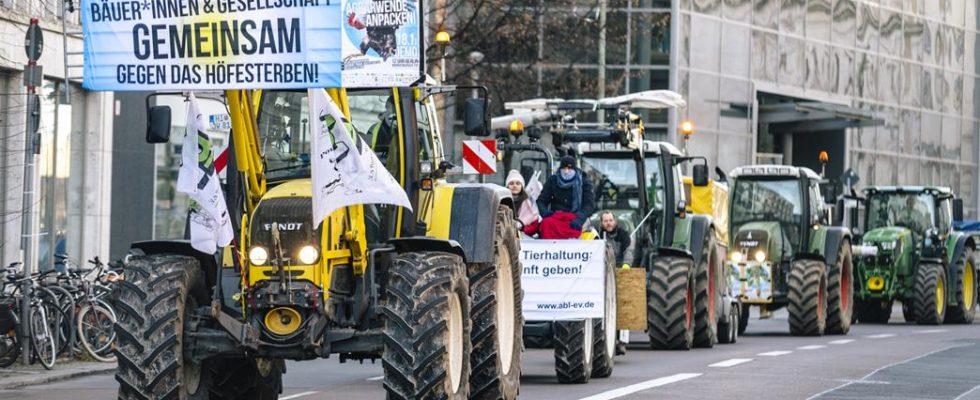 Zehntausende gegen Agrarindustrie